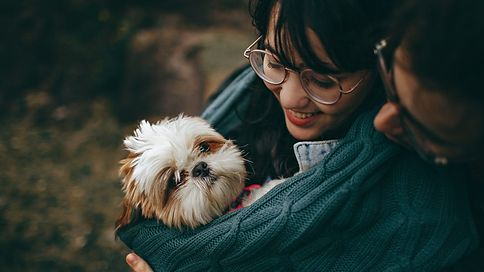 Who Do You Love More..Your Pet or Your Partner?